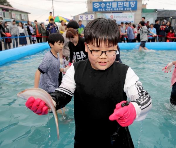 몽산포항 주꾸미 축제